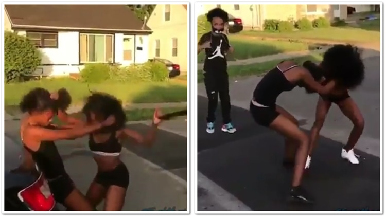 Young Girls With Natural Hair Brawl In The Streets