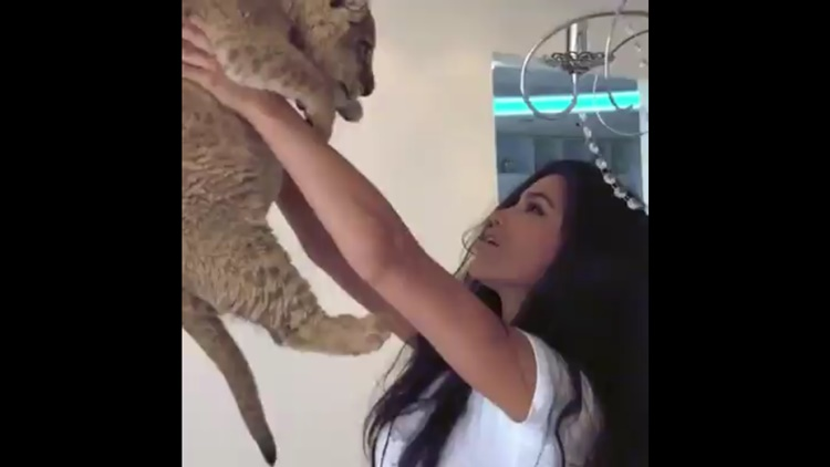 Pet Lion Sprays Model With P*ss